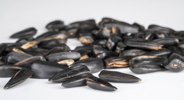 Why are seeds dangerous?